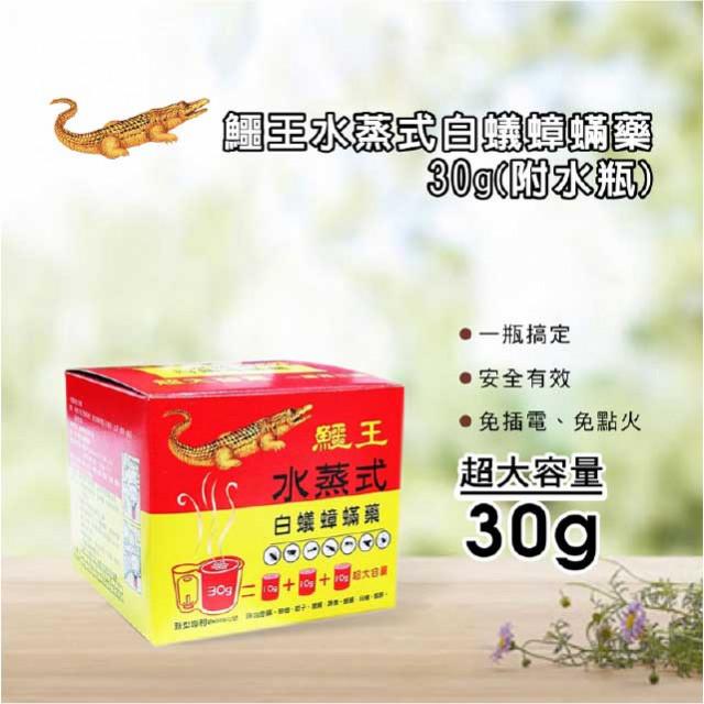 鱷王水蒸式白蟻蟑蹣藥30g