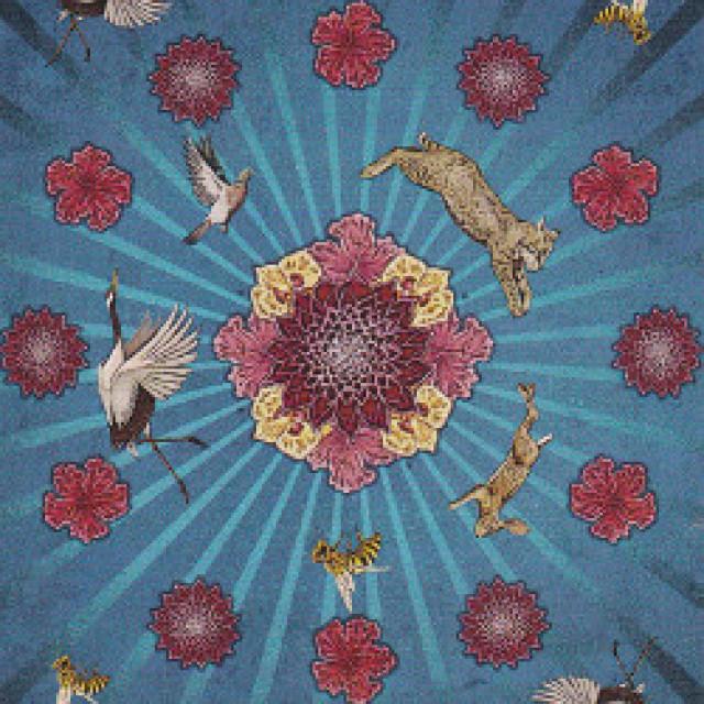 動物圖騰塔羅|野性的呈現|連書硬盒套裝|Animal Totem Tarot