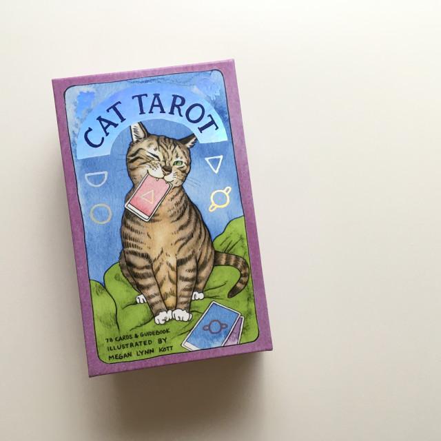 貓塔羅|貓控來收編|硬盒|Cat Tarot
