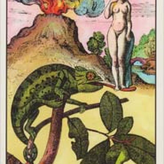 光芒太陽神諭卡 卜卦占星卡 連144頁指導書 硬盒 Oracle of the Raidant Sun